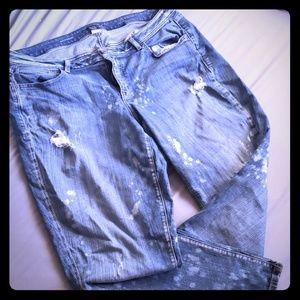 Lane Bryant Boyfriend Jeans